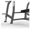 FW-2003 Olympic Decline Bench